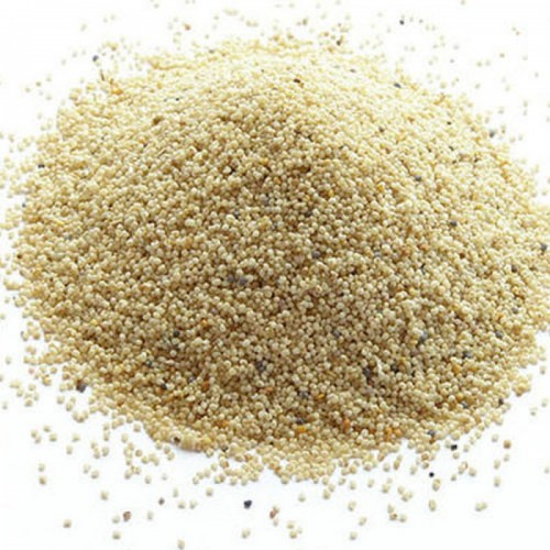 Chaseup Khashkhash Spices 100gm