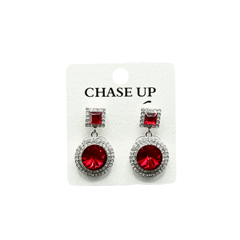 Chaseup Zircon Ear Ring P27